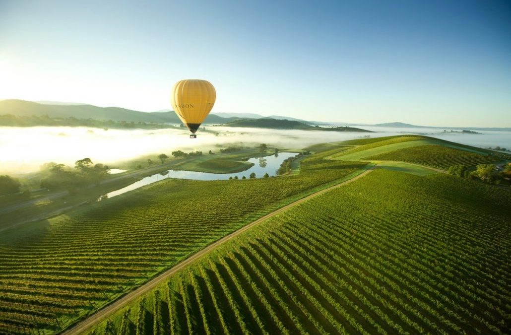 Why the Yarra Valley should be on your must visit list!