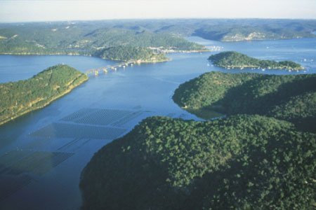 Escape to the Hawkesbury River for a brilliant day on the water!