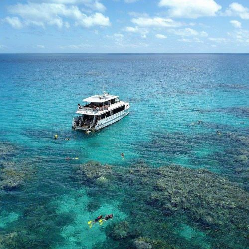 Stories from our backyard: Wavelength Reef Cruises