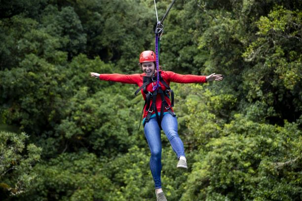 Stories from our backyard: Rotorua Canopy Tours
