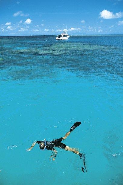 Wavelength Reef Cruises