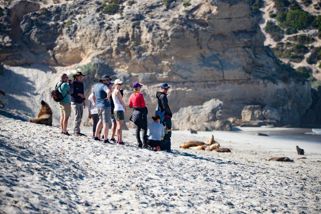 exploring the best of Kangaroo Island